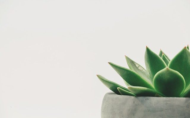 6 Things To Do To Start Minimalism & Live Happily